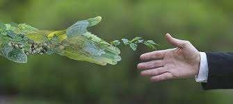 ESG: fa bene a te e all'ambiente